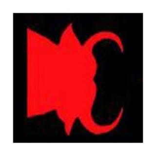 Shop Counsuelo Giacaz logo