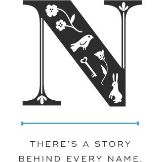 Shop Name Stories logo